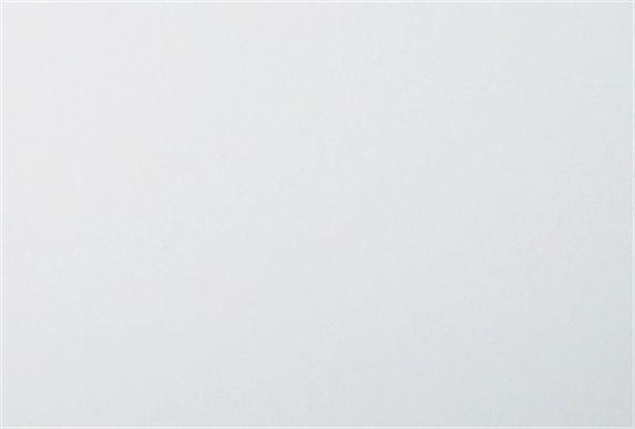 抗指纹PET SK-8001